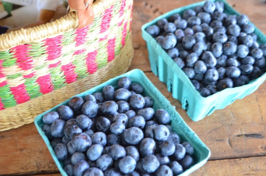 phoebes pure food blueberries