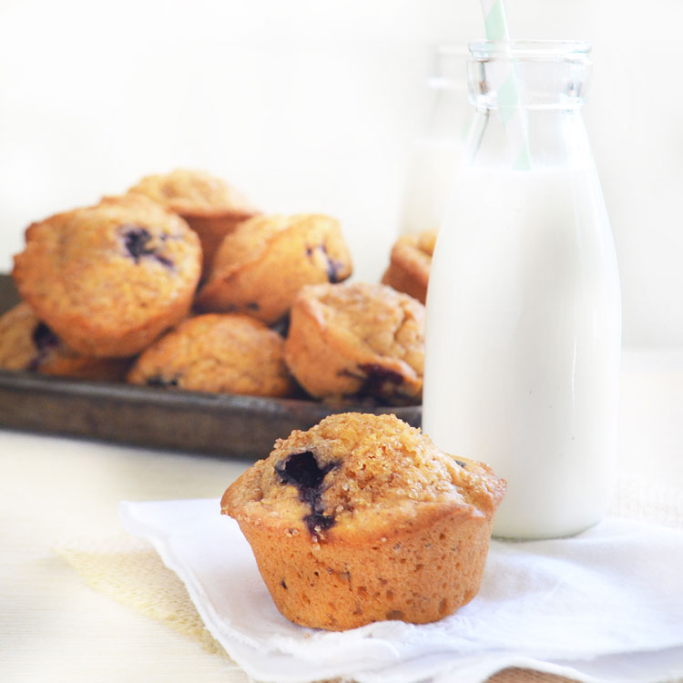 Whole Wheat Blueberry Muffins phoebes pure food